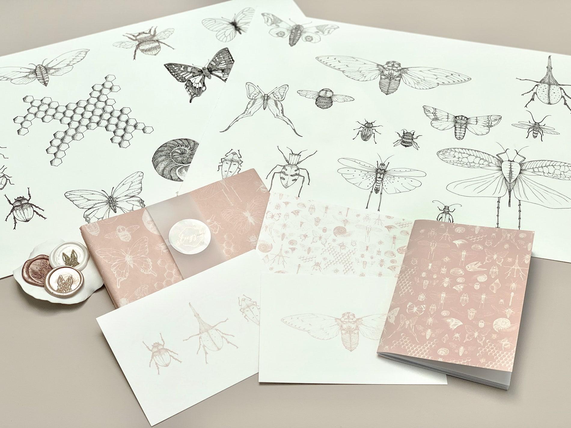 Illustrations for the Darwin custom tissue paper design